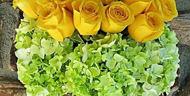 M49/Rosas con Hortencias