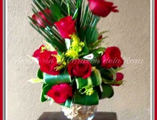M43/Rosas en pecera