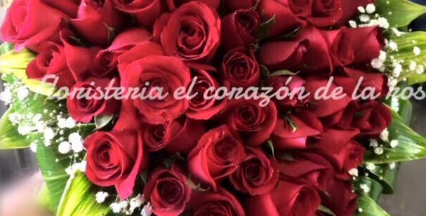 M47/Corazon con rosas