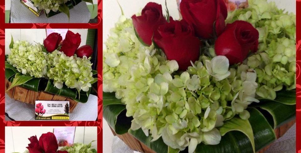 M46/Corazon rosas