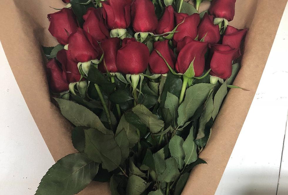 M68/24 rosas solas