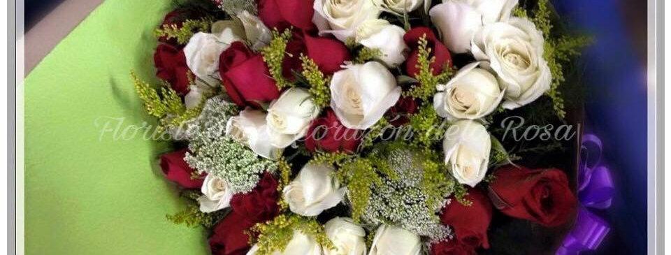 M28/Ramo 48 rosas
