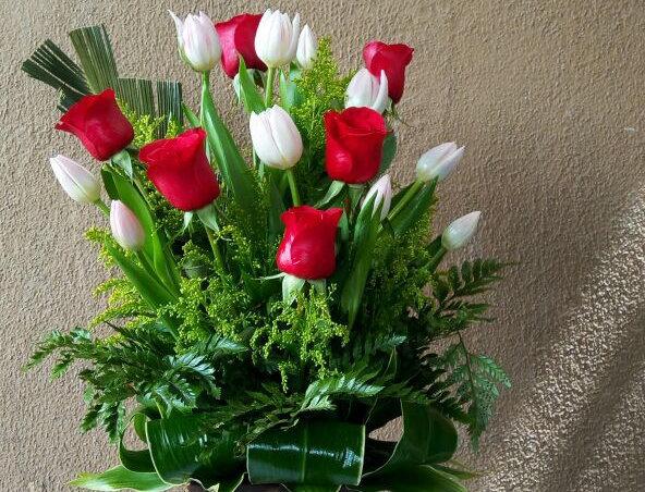 M34/Tulipanes 6 rosas