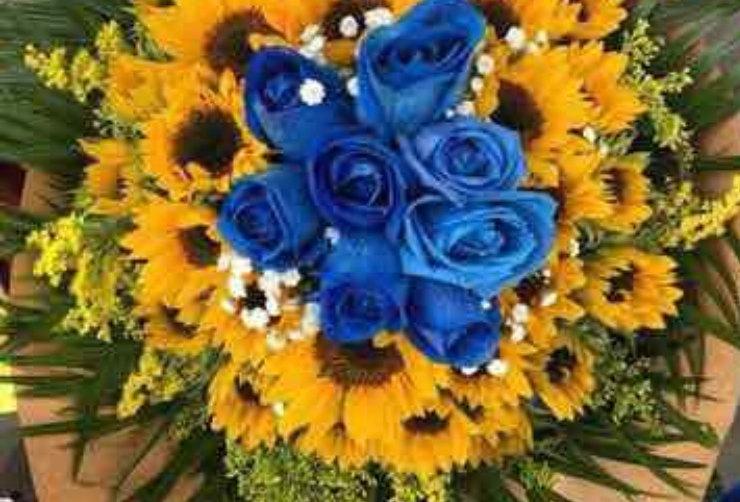 M71/24Girasoles con 6 rosas