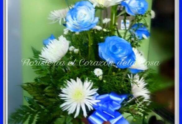 M42/Rosas azules