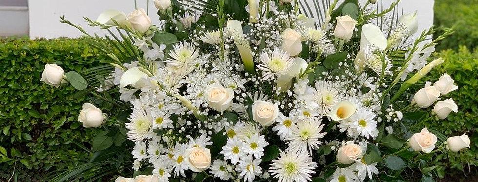 Tributo grande 24 rosas con calas y gypsofilia