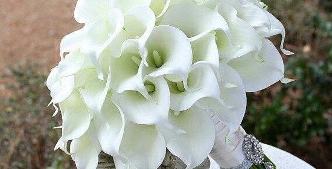 bouquet 36 mini calas