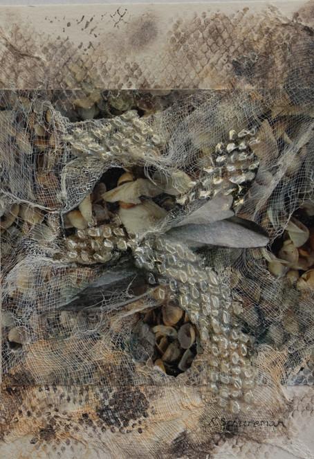 Netting and Shells