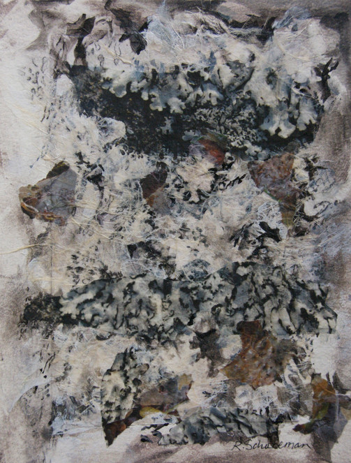 Lichen and Seaweed