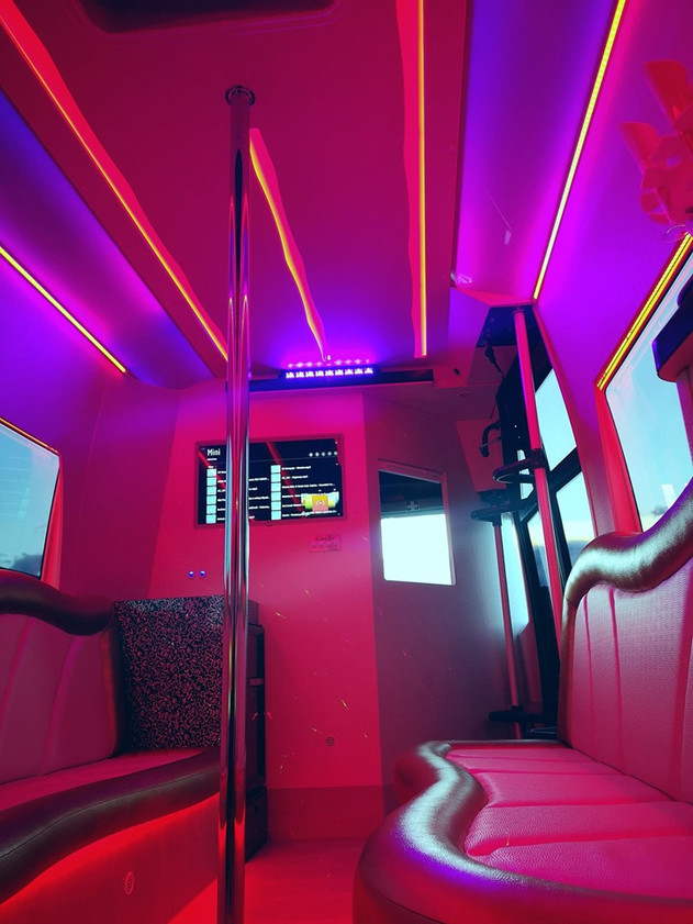 The party will be a minibus installation