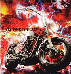 Falcons dream