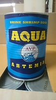 artemia cysts for sale , brine shrimp eggs for sale