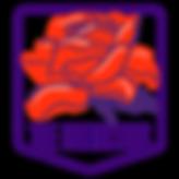The Protectors Logo.png