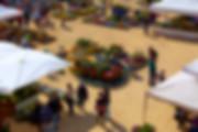 panoramica dall'alto di Fiorissimo al castello di Novara fotografo eventi Novara
