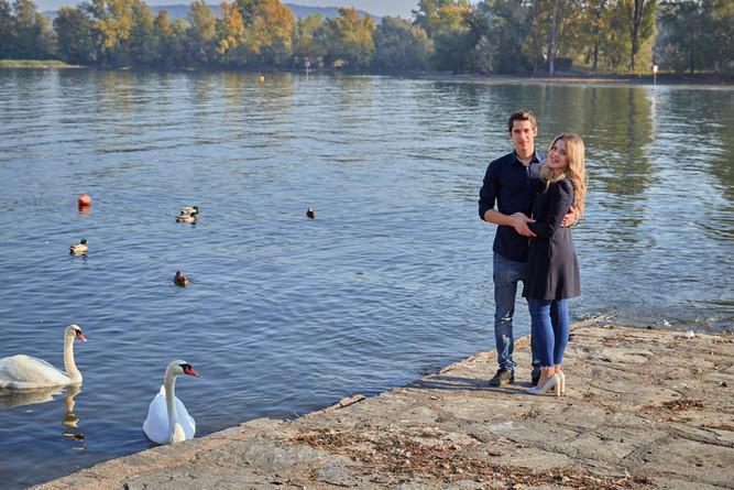 Fidanzati in piedi in riva al lago con cigni, servizio di fidanzamento, fotografo di matrimonio