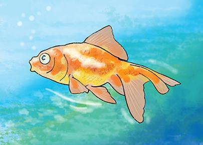 Goldfisch.png