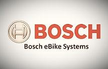 Bosch_edited.jpg