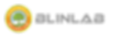 logo Blinlab.png