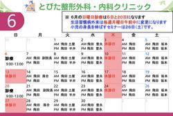 6月診療予定表