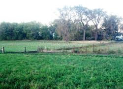grass_wacholz_farm