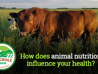 How does animal nutrition influence your health?