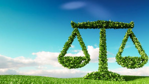 International Environmental Law and Its Application in India