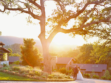 Jennyfer & Sean Micro Wedding - Sarahi H