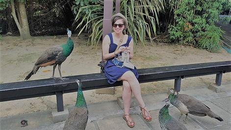 Peacock photo.jpg