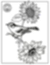 Screen Shot 2020-04-01 at 8.04.14 AM.png