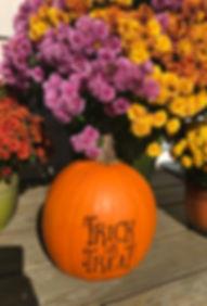 October Pumpkin.jpeg