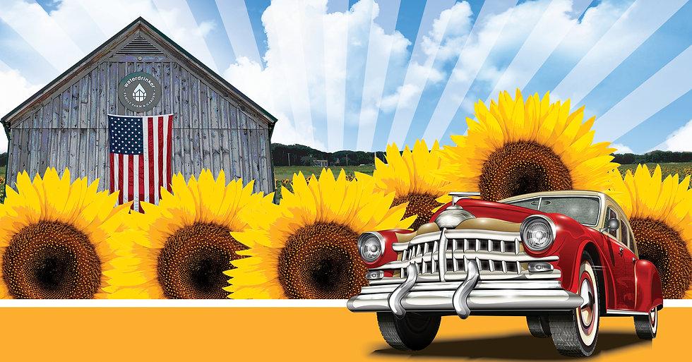 sunflower car show2.jpg