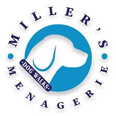 Miller Menagerie Dog Walking San Francisco