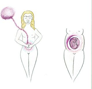 Zwangerschap & de vader energie