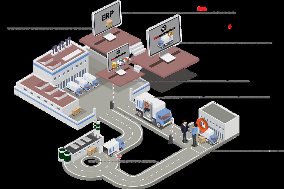 Infografik Integration vom ERP ins TMS