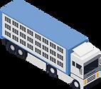 Lastwagen für Tiertransporte.