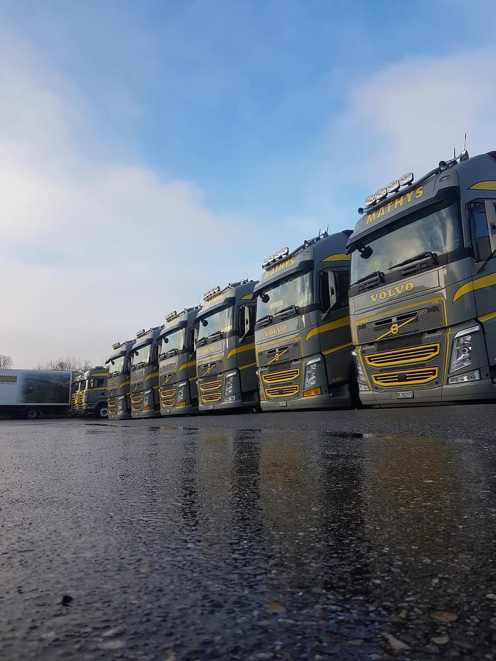 Das Bild zeigt die Flotte der Stückgutlastwagen.