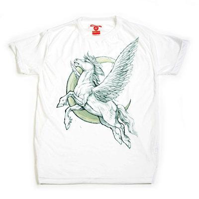 99 Pegasus