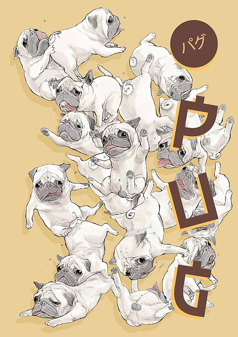 16 Pugs