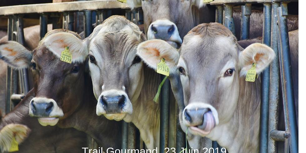 Trail Gourmand Dimanche 23 Juin 12 ou 18km. Marcher et Goûter local en même temps! !