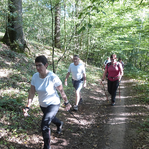 Trail Abbaye D'Aulne