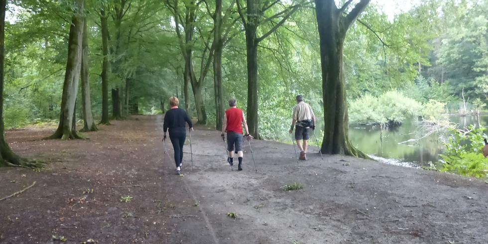 Découverte gratuite au Bois De Baudour Ronde Maison (1)