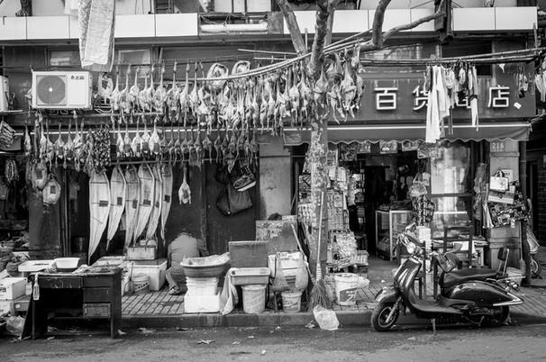 Shainghai, China, 2013