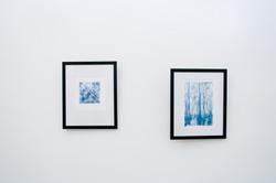 Maya Venjova Exhibition Framed