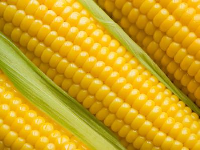 Industry Lobbyists & GMO Labeling
