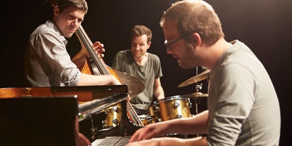 Peter Zihlmann Trio: TROJA