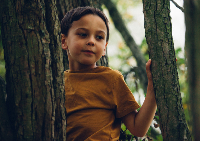 Autumn mini shoot -1.jpg