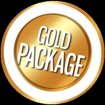 Gold Website Setup Package