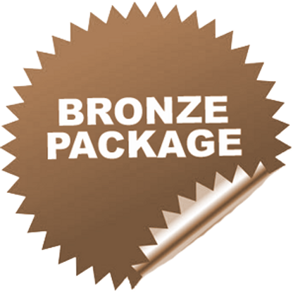 Bronze Website Setup Package