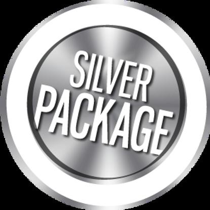 Sliver Website Setup Package