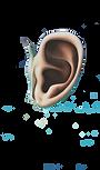 Dali Ear